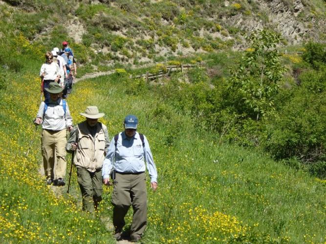 Scenes from Val d'Aran walk